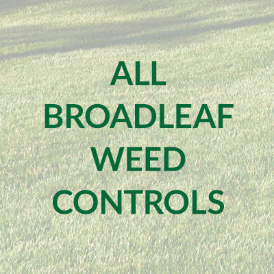 Broadleaf Weeds